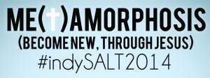 salt2014